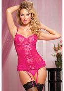 Paisley Pleasure 2pc Bustier-pink-s